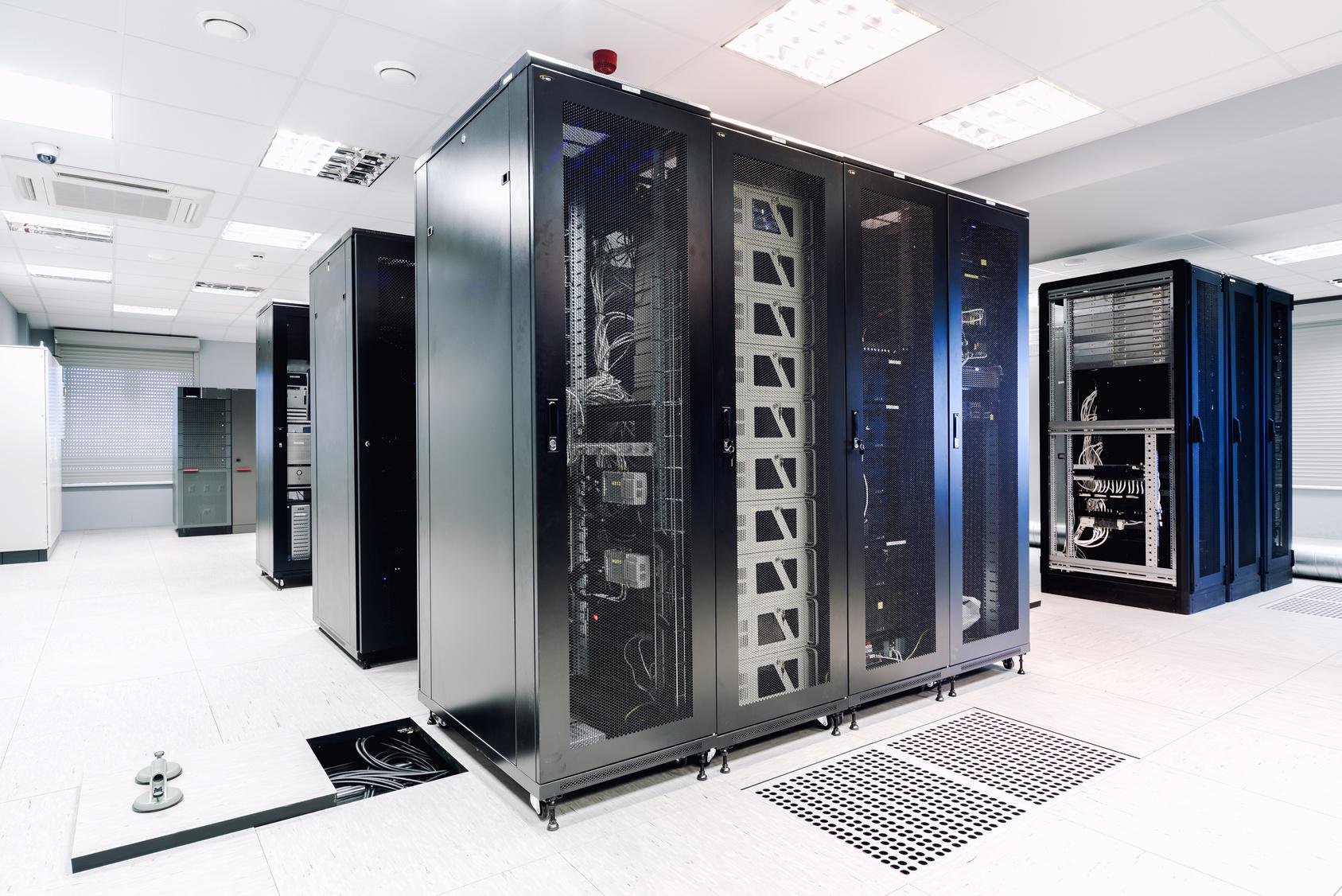 Zabezpieczanie serwerowni przed szkodnikami